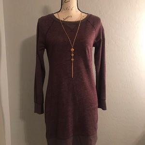Banana Republic Sweatshirt Dress